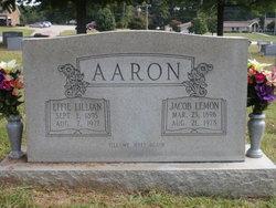 Jacob Lemon Jake Aaron