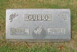 Bernese <i>Gapinski</i> Gullo