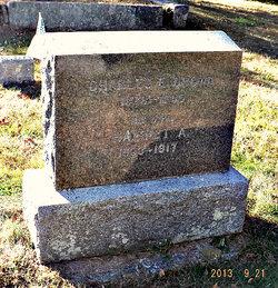 Harriet A Brown