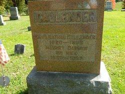 Rev Nathan Callender