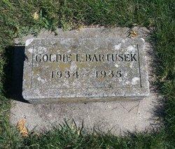 Goldie Bartusek
