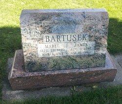 James Bartusek