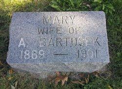 Mary Bartusek