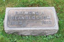 Raymond A. Beanblossom