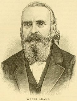 Wales H Adams