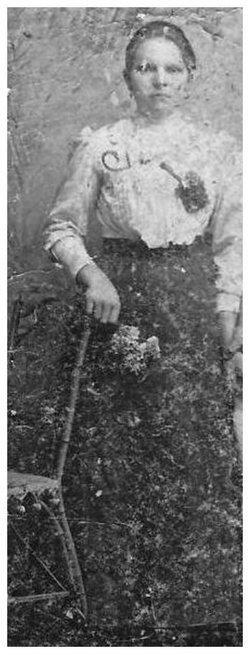 Paul�na <i>Jan&#269;i</i> Pallerov�