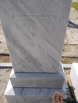 Sarah Ann Elizabeth Sallie <i>Hattaway</i> May