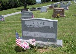 Jesse Baldwin Grove