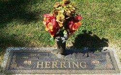 Lora Lynette <i>Cook</i> Herring