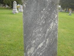 Levi William Southard