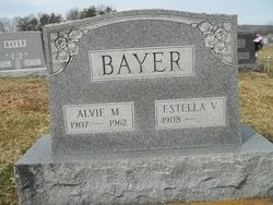 Alvie M Bayer