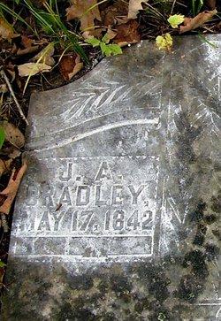James Andrew Bradley