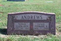 Eliza Ann <i>Williamson</i> Andrews