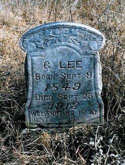 G. Lee