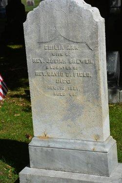 Emilia Ann <i>Field</i> Brewer