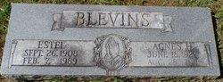 Agnes Hastletine Blevins