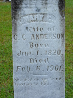 Mary G Anderson