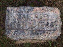 Wallace Lape
