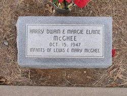 Harry Dwain McGhee