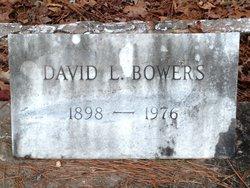 David L Bowers