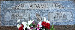 Jesus T Adame