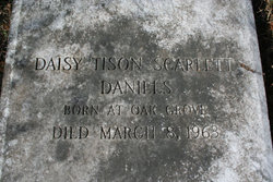 Daisy Tison <i>Scarlett</i> Daniels