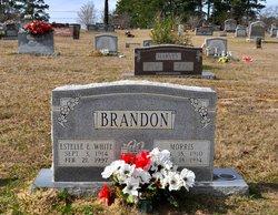 Estelle E. <i>White</i> Brandon