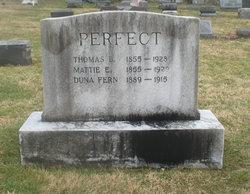 Martha E <i>Copper</i> Perfect