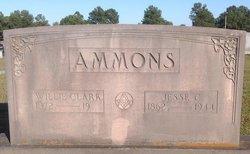 Ann Willie <i>Clark</i> Ammons