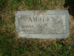 Alvina Ambers