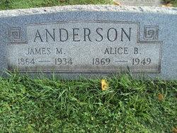 Mary Alice <i>Beecroft</i> Anderson