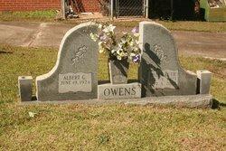 Helen <i>Mitchell</i> Owens