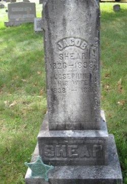 Josephine Shear
