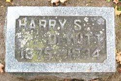 Harry S DeWitt