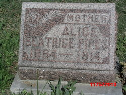 Alice Beatrice <i>Shepherd</i> Pipes