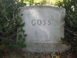 Amelia Ann Goss