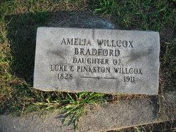 Amelia <i>Willcox</i> Bradford