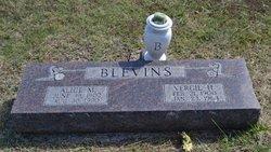 Alice M Blevins