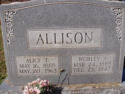 Alice <i>Tolbert</i> Allison