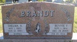Bernhard F Brandt