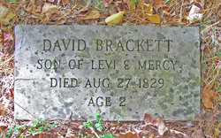 David Brackett