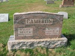 Abbie Ann <i>Berkebile</i> Cameron
