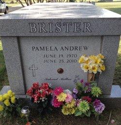 Pamela Andrew Brister