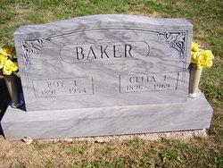 Celia F <i>Walton</i> Baker
