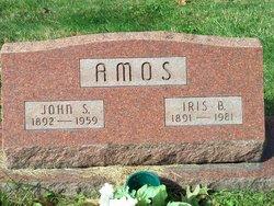 Iris <i>Bailey</i> Amos