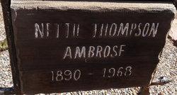 Nettie <i>Thompson</i> Ambrose