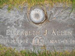 Elizabeth Jane <i>Butterbaugh</i> Allen