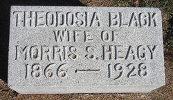 Theodosia <i>Black</i> Heagy