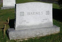 Winnie Jane <i>Fowler</i> Barnes