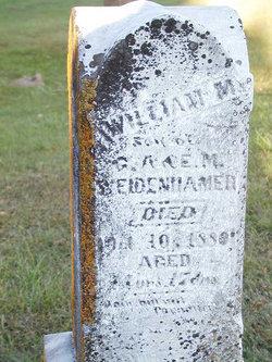 William M Weidenhammer